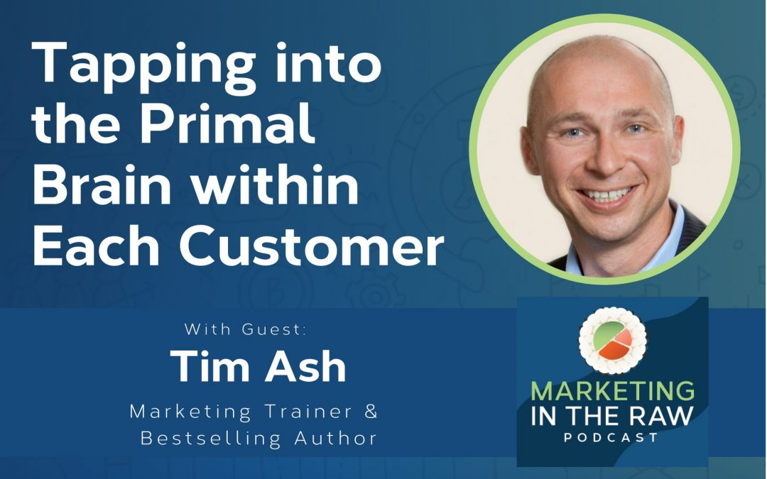 Tim Ash on the Marketing In The Raw podcast